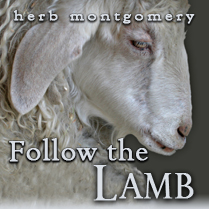 followthelamb