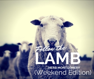Follow the Lamb (Weekend Edition)