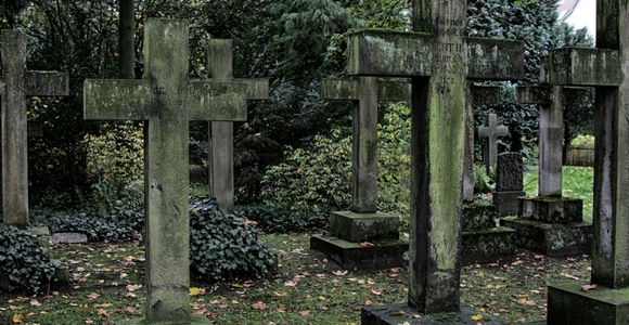 Grave yard full of crosses